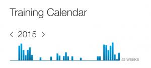 Strava calendar 2105